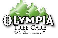 Olympia Tree Service